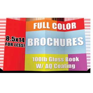 8 5x14 Brochure Cheap Printing High Quality Free Shipping